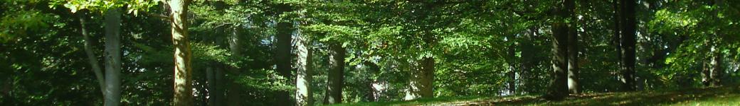 Makovinyi Zoltán hivatalos oldala